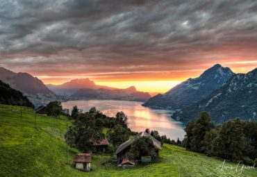 Landscapes and Lifestyle